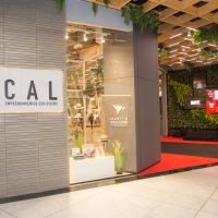 LOCAL: un espacio para emprendimientos digitales